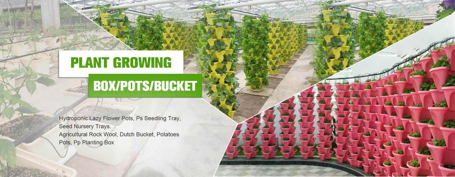 PLANT GROWING BOX/POTS/BUCKET