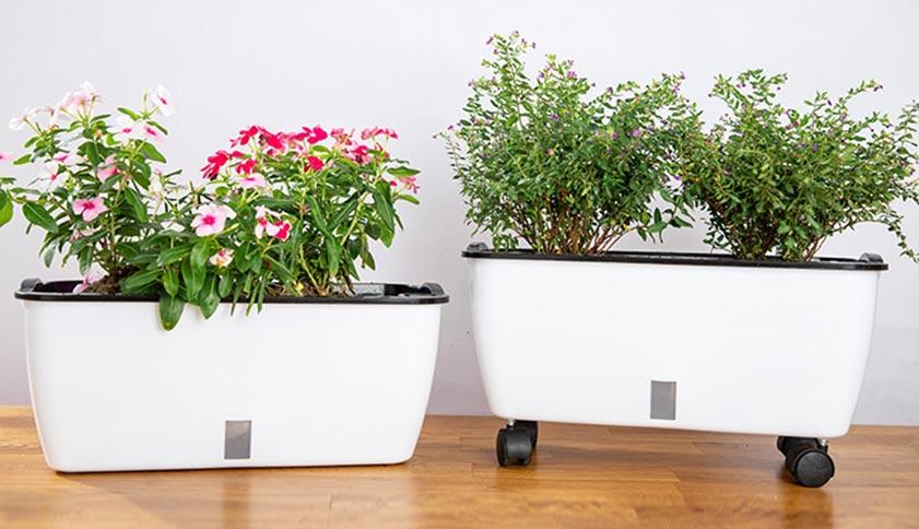 Self-Watering Planting Pots