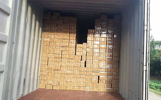 The Philippines customer Purchase One 20'GP container order goods