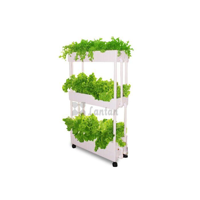 Three Layer NFT hydroponic box
