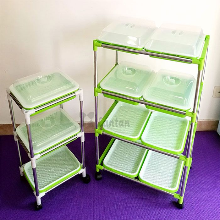 Sprout Trays SEED NURSERY TRAYS With Lids