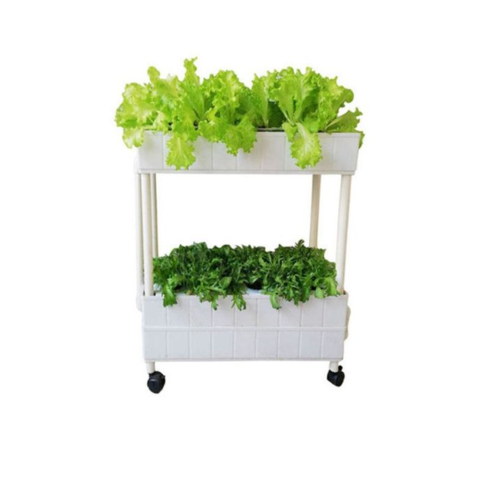 Two Layer NFT hydroponic box