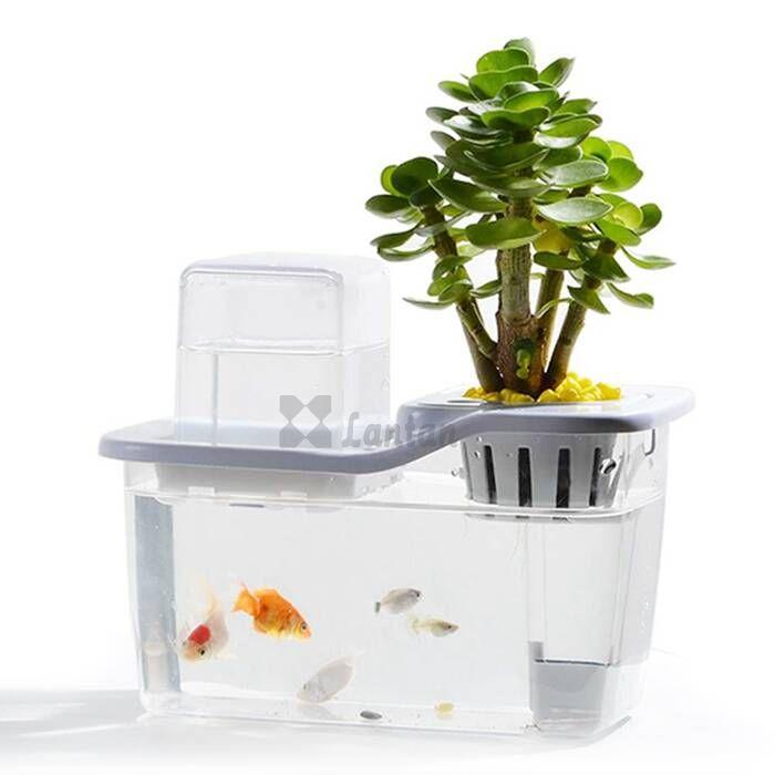 Mini Aquaponic Garden 2
