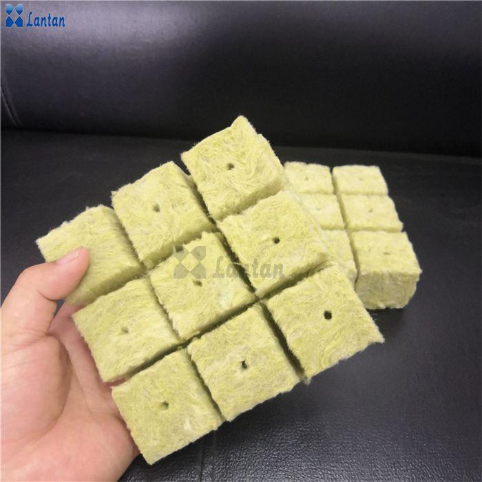 Rock wool seedling cubes