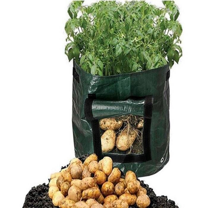 Plastic Potato grow pots/bags