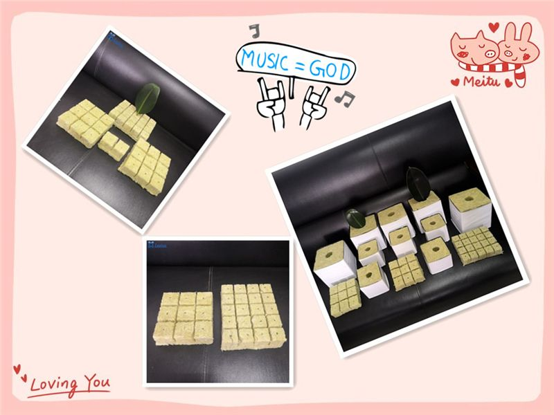 Agricultural Rock Wool seedling cubes