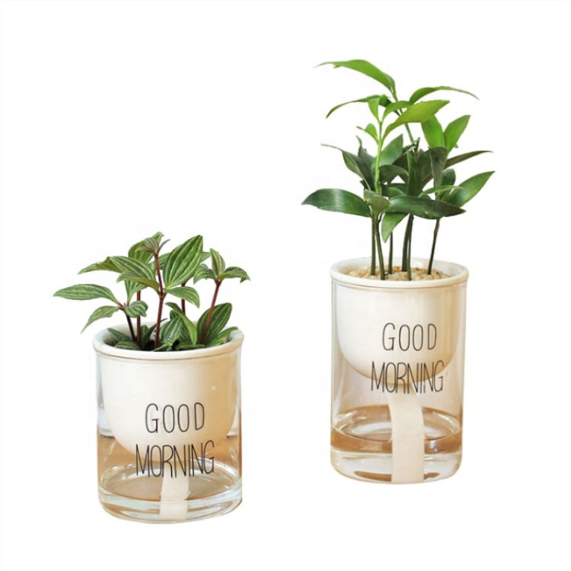 New Design Self watering Pots